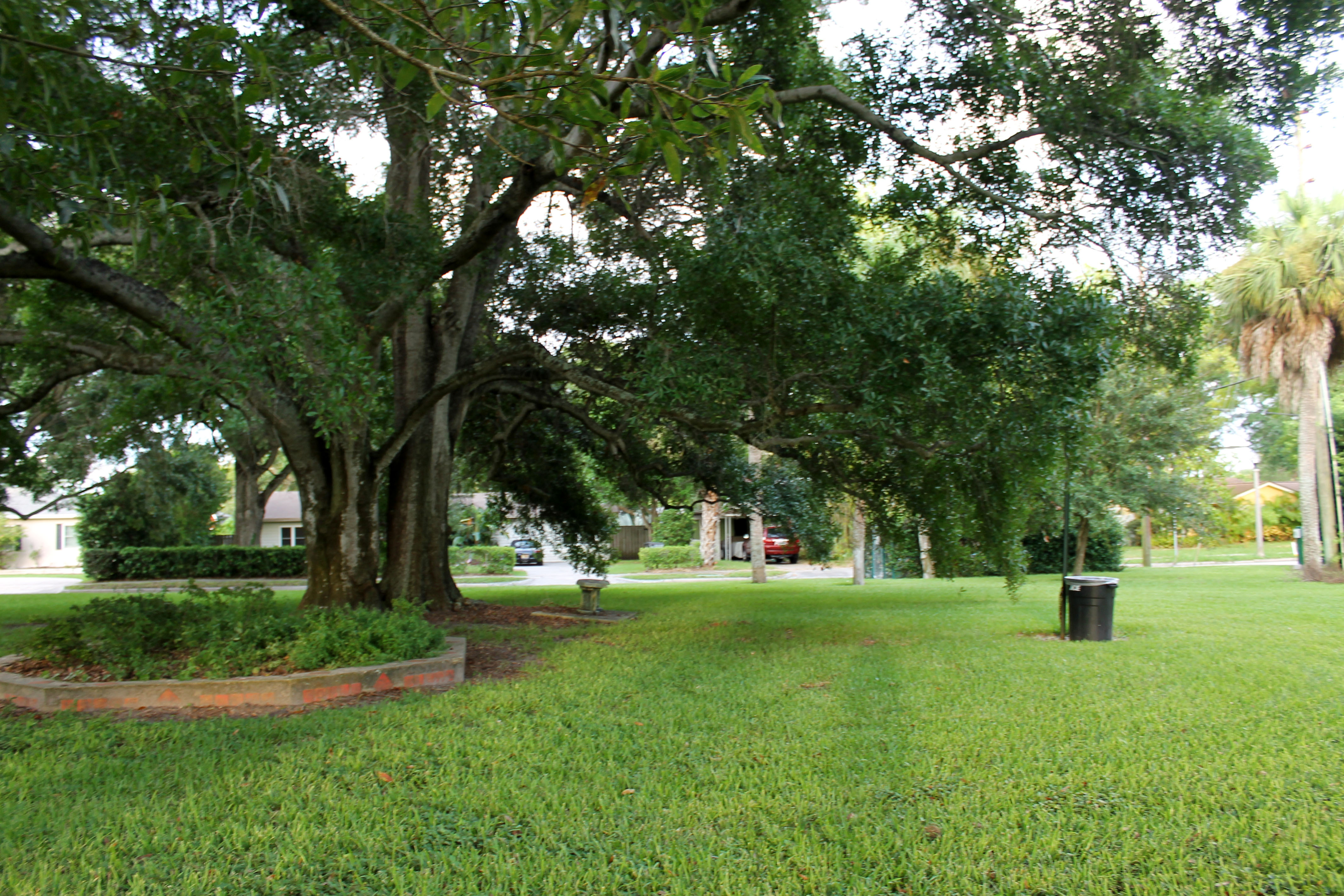 Freshly-cut grassy area in Rex Beach Park with a large oak, flower planter, and trash can